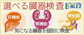 blez clinic Organ inspection